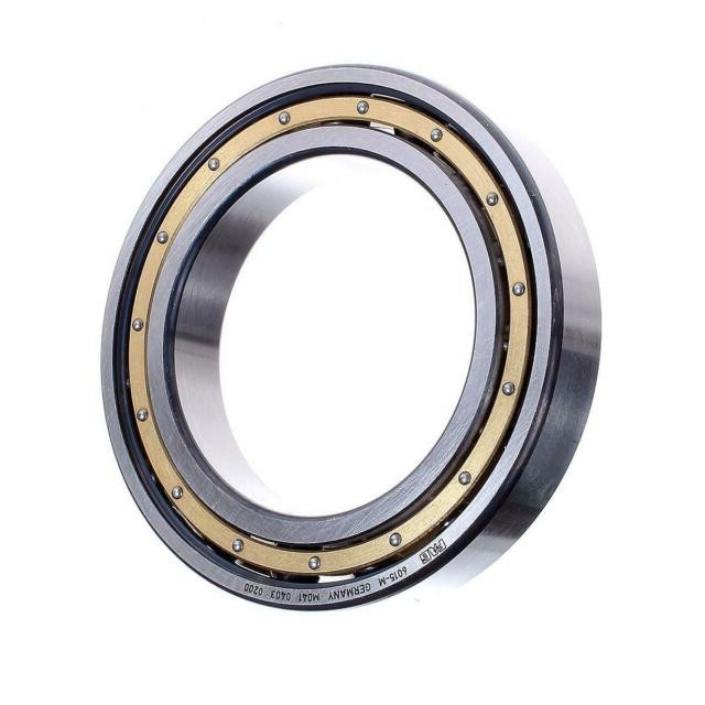6015zz 6015 2RS Distributor SKF NSK NTN NACHI High Quality Good Price Deep Groove Ball Bearings