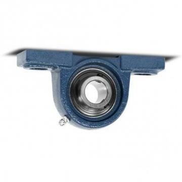 SKF Pillow Block Bearing (UCP 206)