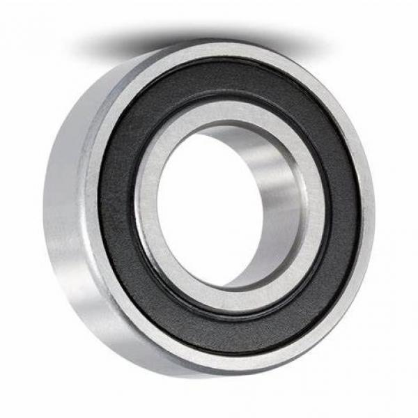 Agricultural machine deep groove ball bearing 6007 2RS C3 #1 image