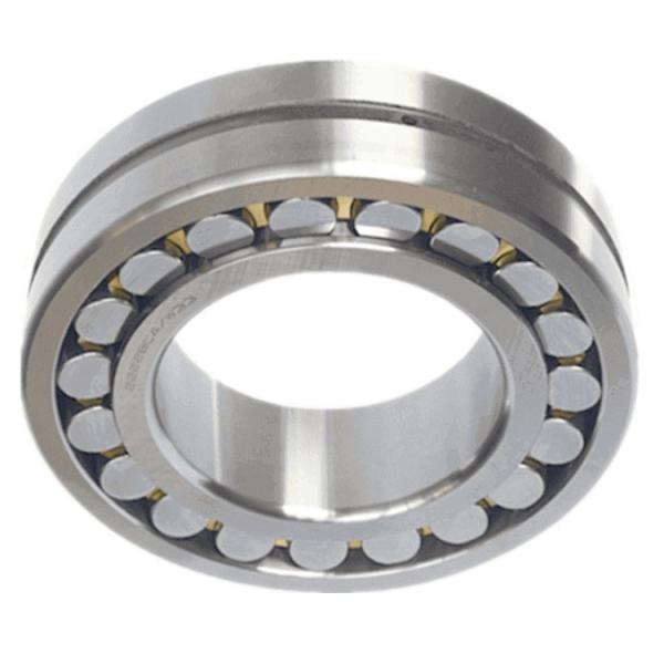 Pumps & Compressors Nylon Cages Spherical Roller Bearing(22228 22230 22232 22234 22236 22238 22240 22244 W33) #1 image